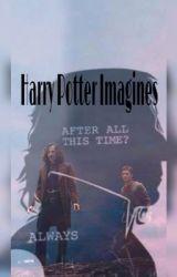 Harry Potter Imagines by hellomsjordan