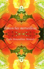 DIMANCHES MERVEILLEUX by lydiebonanmontels