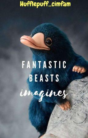 Fantastic Beasts Imagines by HufflepuffMixer