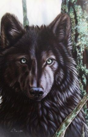 WolfGirl [Peter Parker x Reader] by lizardGurl337