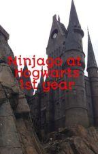 Ninjago at Hogwarts: 1st year {Slow Updates} by PurpleNINJA2020