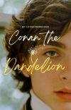 Conan The Dandelion (Boyxboy) ✔ cover