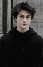 What a Melody || Harry Potter x Reader || by PleaseDoNotKnowMe
