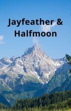 The Mountins (Jayfeather/Half Moon by NerdyEmo666