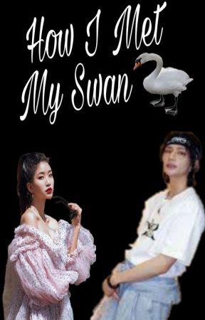 How I Met My Swan by KOREA_ANGEL
