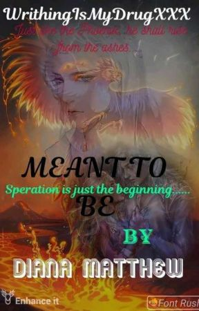 Meant to Be (2# of the Royalties Series) by WritingIsMyDrugXXX