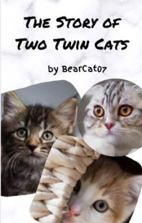 The Story of Two Twin Cats by bearcat07