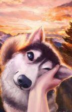 Forrest Dog  by Midnightwriter2013