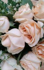 Mawar Oranye by artikasafitri