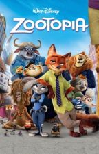 Different Life   Zootopia x Reader by ActualMess230