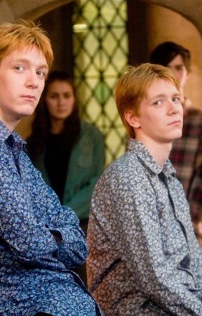 Life after hogwarts (Fred Weasley x Reader) by potterhead_72
