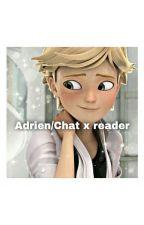 Adrien/Chat x Reader Oneshots :3 by bugineste