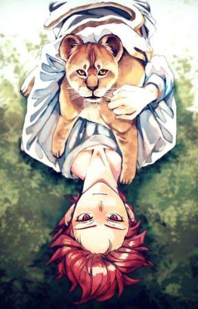 | Akashi x reader / Seijuro x reader |  by ShaTodoroki