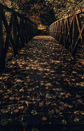 Memories of the Past~ Schlattbur by Sydsydqr