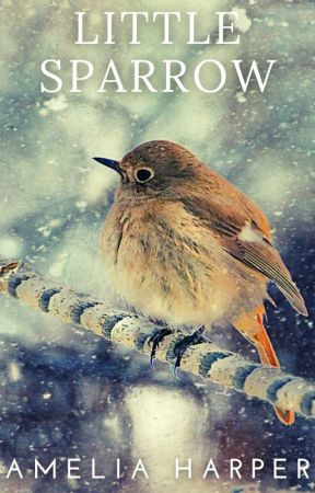 Little Sparrow by Spruce_Goose