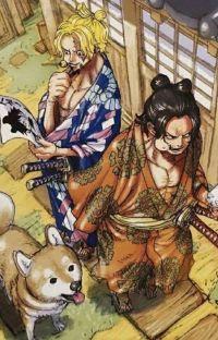(  PARADISE  )     k. kentarō cover