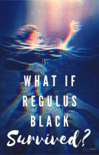 What if Regulus Black Survived? (Book 3) by 1787AmericanRevnerd