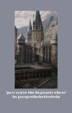 pov: you're the hogwarts whore by georgesthebettertwin