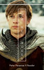 Stained Glass ~ Peter Pevensie X Reader by imtired221b