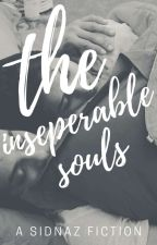 the inseperable souls by hoboaesthetic