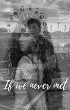 If we never met by usedtojapan