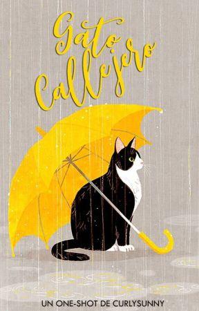 Gato Callejero  | ✓ by CurlySunny