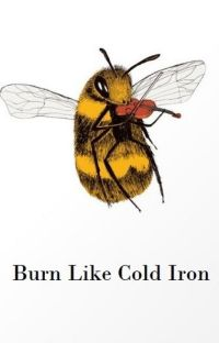 Burn Like Cold Iron cover