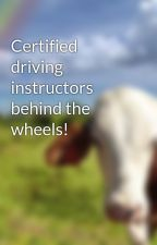 Certified driving instructors behind the wheels! by deezdriving