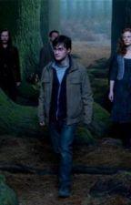 Harry Potter One Shots by harrisonforpresident