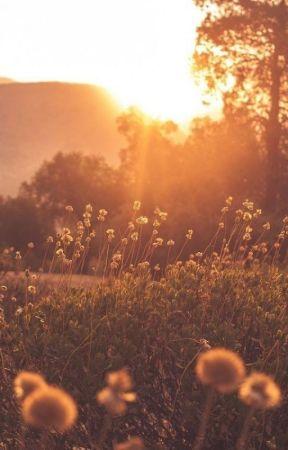 Sunshine ⁂ Alter Logs by ChelleBug10