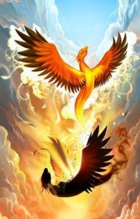 Rise Of The Phoenix by ThunderScamander1108