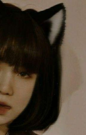 MY PRECIOUS CAT  ✿  Yoonji x Jungkook by cchocolatea