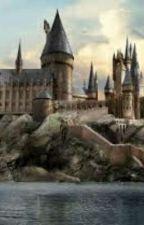 Dumbass Hogwarts Oneshots  by DrarryLoverrr