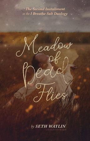 Meadow of Dead Flies by SethWaylin