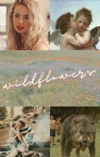 wildflowers ¡paul lahote! by shittyrhinestones