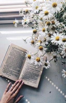 Đọc truyện jaehyungparkian   gửi người dăm ba câu thương nhớ