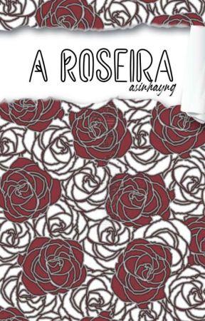 A Roseira - Han Jisung by asinhayng
