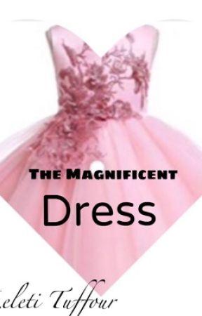 The Magnificent Dress by Leletiabenatuffour