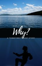Why?(A Tommyinnit Angst Story) by Illnami