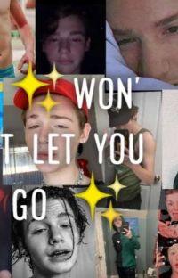 ✨won't let you go ✨ //DOKONČENO// cover