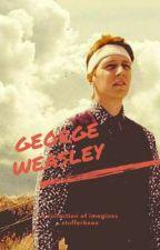 George Weasley Collection by stufferknee