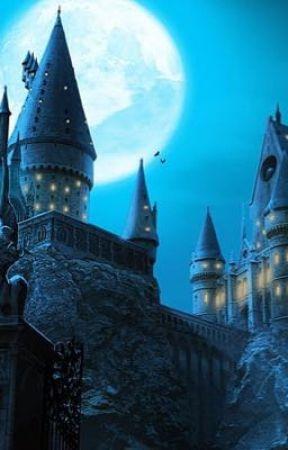 Harry Potter Preferences by sstrangerpotterr
