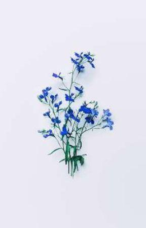 flowers. flowers EVERYWHERE (hanahaki saiouma) by pikokom