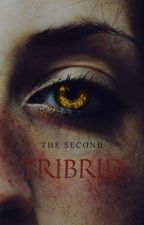 The Second Tribrid {H.P x TVDU} by potterssalvatore