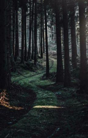 The Long Walk by michaelrkielfictions