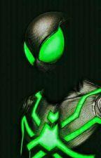 Web Hero: Spiderman by fanchristpo