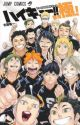 HAIKYUU!! FINAL GUIDEBOOK  by