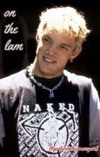 On The Lam ~ Stu Macher x Reader by TheStonerWitch