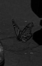 Shifting || Harry Potter Shifting Script! by lilmissmarauder