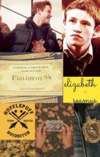 My Brothers Best friend. (A Seamus Finnigan Love Story) by emilyhopesponaugle